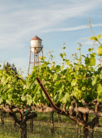 Martin Ray Winery water tower