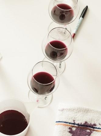 Wine glasses lined-up for tasting